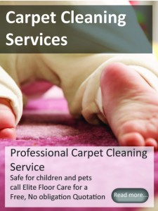 Carpet Cleaning Services from Elitefloorcarespecialists.com